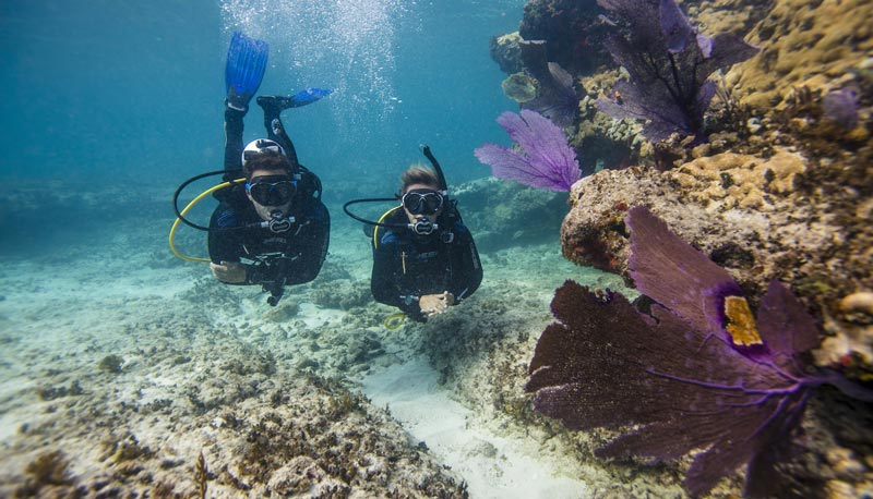 scuba diving vision yachting corfu yacht transfers charters